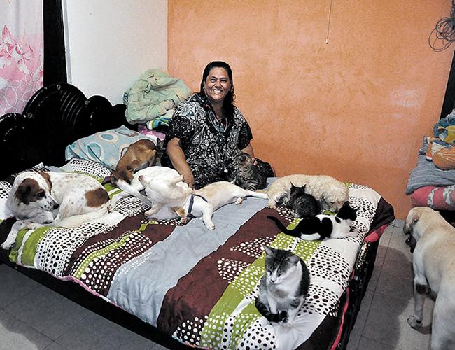 Aunque nunca imaginó tener tantos animales, Omaira Forero Garay asegura que desde que llegaron a su vida la cambiaron por completo, le han dado paz. | AL DÍA