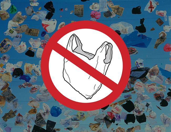 5ad17096b La vida útil de una bolsa de plástico es de 20 minutos y su uso debería