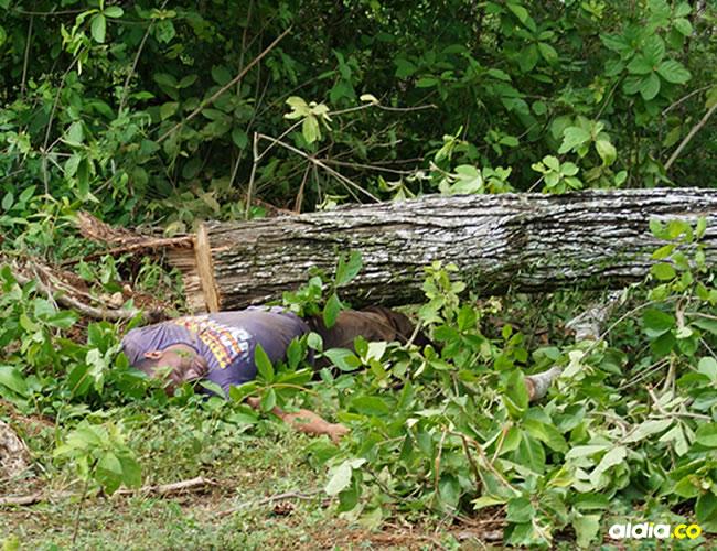 Sobre el cadáver de José Alberto Herazo Novoa fue encontrado el árbol que cortaba y que le cayó encima ayer. | Al Día